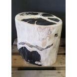 Petrified Wooden Trunk, black and white