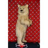 "Wooden Bear ""Pöili"""