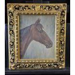Oil on cardboard Horses head, signed. Carved, gilded frame. 36 x 29cm.
