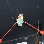 Bear on tightrope