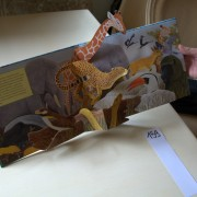 Wonderful Africa. Pop-up book