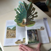 Olli, the little elephant. Pop-up book