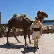 Camel and Camel Driver
