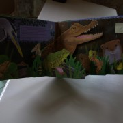 In the heart of the night. Pop-up book