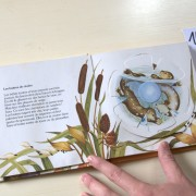 Animal Games. Pop-up book