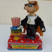 Mr. Fox the Magician