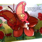 Colours of Animals. Pop-up book