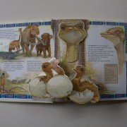 Africa Giants. Pop-up book